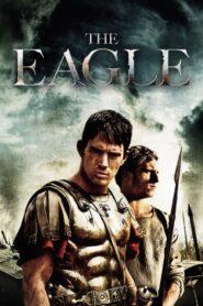 Dziewiąty legion 2011