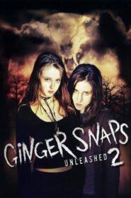 Zdjęcia Ginger II 2004
