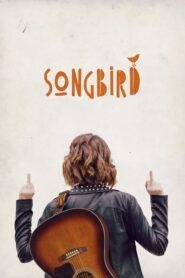 Songbird 2018