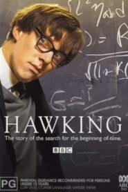 Hawking 2004