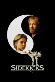 Sidekicks 1992
