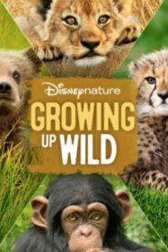 Growing Up Wild 2016