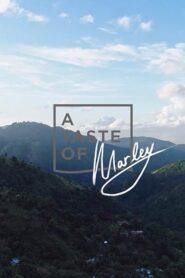 A Taste of Marley 2019
