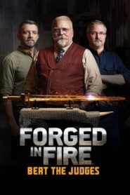 Forged in Fire: Beat the Judges 2020