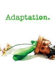 Adaptacja 2002