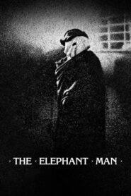 Człowiek słoń 1980