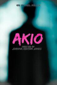 Akio 2013