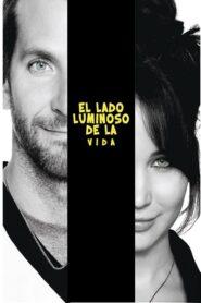 El Lado Luminoso De La Vida 2013