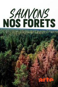 Die Waldretter 2020