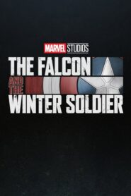 The Falcon and the Winter Soldier 2020