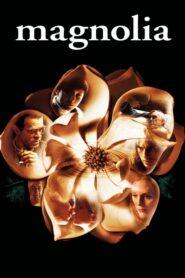 Magnolia 1999