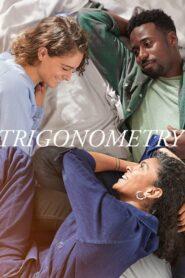 Trygonometria 2020
