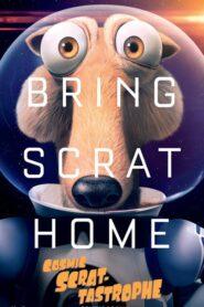 Kosmiczna wiewiór-strofa 2015