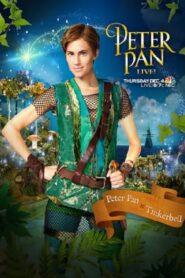 Peter Pan Live! 2014