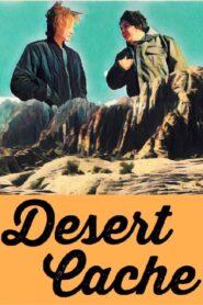 Desert Cache 2020
