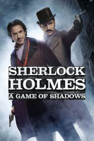 Sherlock Holmes: Gra cieni 2011