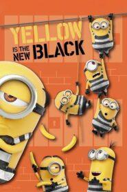 Żółty to nowa czerń 2018