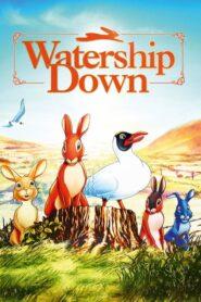 Wzgórze królików 1978