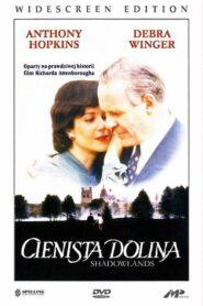 Cienista dolina 1993